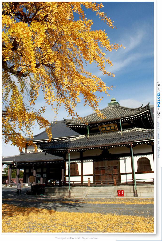 Pic Pimg Tw Yunima 1439118998 1208364725 L Jpg